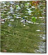 Pond 4 Canvas Print