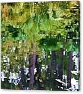 Pond 7 Canvas Print