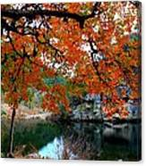 Fall At Lost Maples State Natural Area Canvas Print