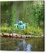 Pond Frog Canvas Print