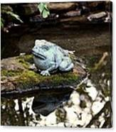 Pond Frog Statuette Canvas Print