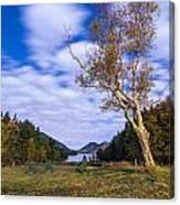 Pond House Views Canvas Print