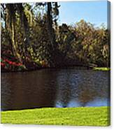 Pond In A Garden, Middleton Place Canvas Print
