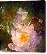 Pond Lily 23 Canvas Print