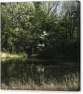 Pond Of Dreams Canvas Print