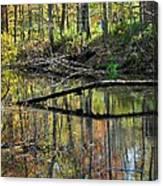 Pond Reflects Canvas Print