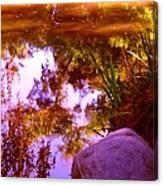 Pond Reflextions Canvas Print