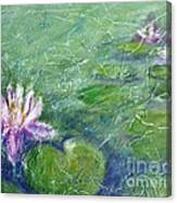 Green Pond With Water Lily Canvas Print