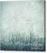 Pondering Silence Canvas Print