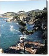 Pont Lobos Cove Canvas Print