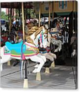 Pony Series 4 Canvas Print