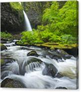Ponytail Falls Canvas Print