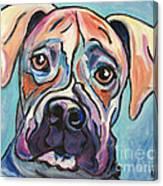 Pop Art Boxer Canvas Print