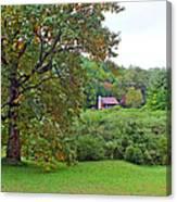 Poplar Tree In The Valley Canvas Print