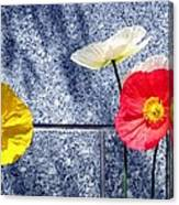 Poppies And Granite Canvas Print