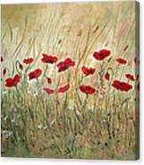 Poppies And Wild Flowers Canvas Print
