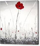 Poppies At Dusk Canvas Print