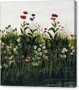Poppies, Daisies And Thistles Canvas Print
