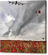Poppies Dropped  Canvas Print