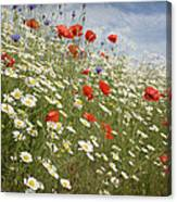 Poppies Et Al Iv Canvas Print