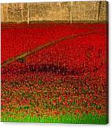 Poppies For The Fallen Canvas Print