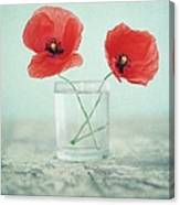 Poppies In A Glass, Still Life Canvas Print