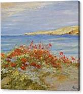 Poppies On The Beach Canvas Print
