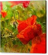 Poppin Poppies Canvas Print
