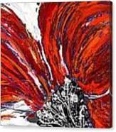 Poppy 44 Canvas Print