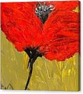 Poppy 46 Canvas Print