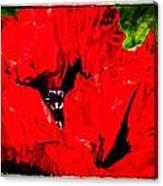 Giant Poppy Art  Canvas Print