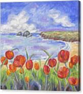Poppy Beach Canvas Print