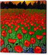 Poppy Carpet  Canvas Print