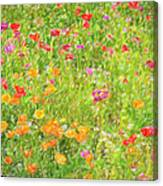 Poppy Confusion Painterly Textured Canvas Print