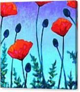 Poppy Corner Canvas Print