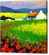 Poppy Field - Ireland Canvas Print
