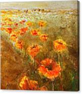 Poppy Field  Triptic Right Canvas Print