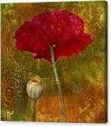 Poppy II Canvas Print