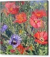 Poppy Parade Canvas Print