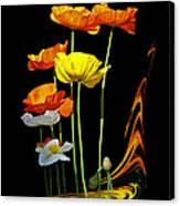 Poppy Pirouette Vertical Canvas Print