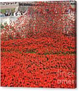Poppy Tribute Of The Century. Canvas Print