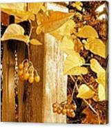 Porch Post Berries Glow Canvas Print