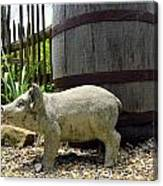 Pork Barrel Canvas Print