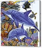Porpoise Reef Canvas Print