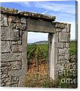 Portal Of Vineyard In Burgundy Near Beaune. Cote D'or. France. Europe Canvas Print
