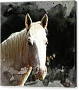 Portrait In Watercolor -  Featured In Spectacular Artworks Of Faa Canvas Print