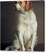Portrait Of A King Charles Spaniel Canvas Print