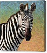 Portrait Of A Zebra - Square Canvas Print