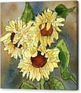 Portrait Of Sunflowers Canvas Print