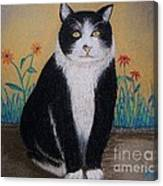 Portrait Of Teddy The Ninja Cat Canvas Print